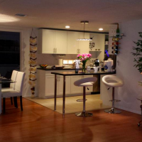 ALENA VACATION HOME LLC